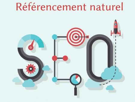 Agence SEO Vendée, Agence de référencement Vendée et audit de site internet