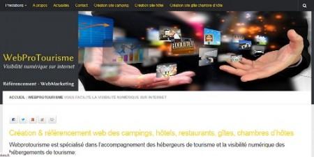 Net entreprise et communication web pour tpe, pme et professionnels du tourisme