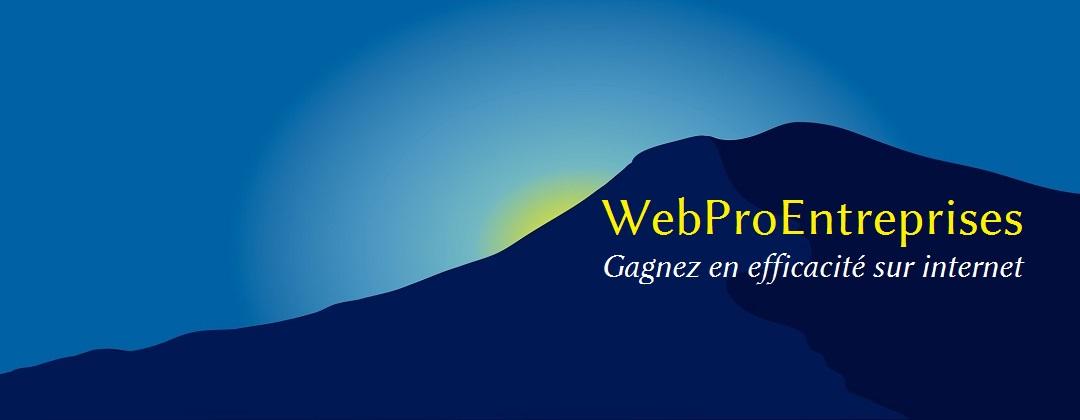 Gagnez en efficacité sur internet avec WebProEntreprises